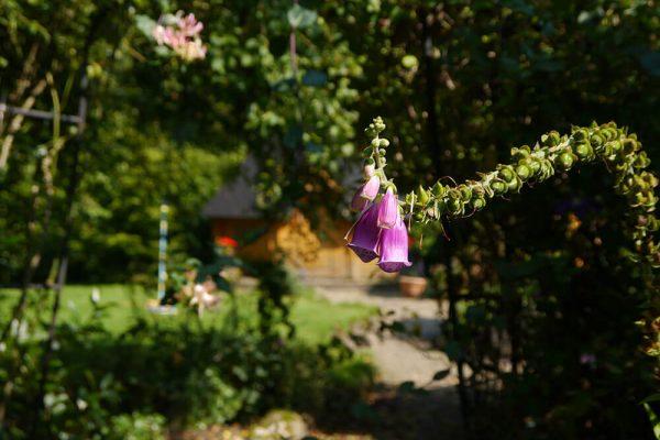 Garden-Rooms_Orchard-Garden_Yurt