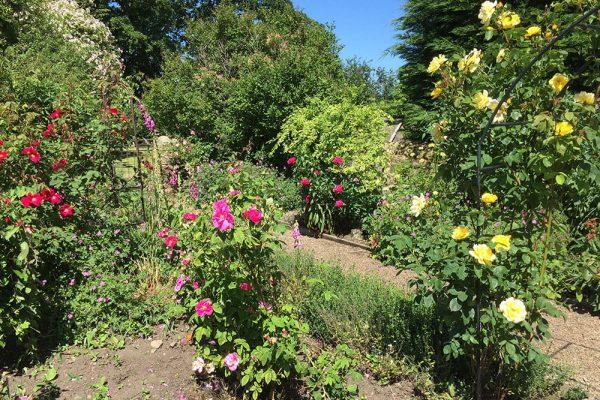 Garden-Rooms_Rose-Garden_2