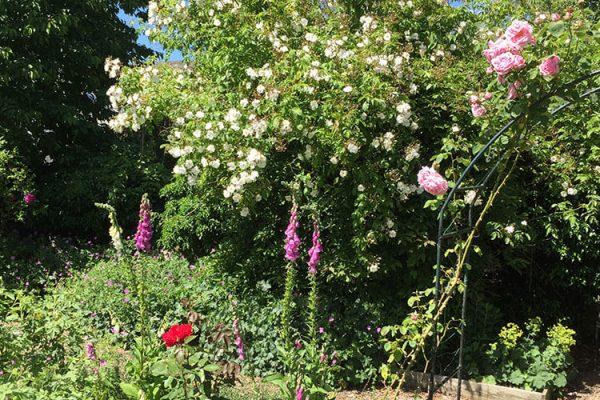 Garden-Rooms_Rose-Garden_3